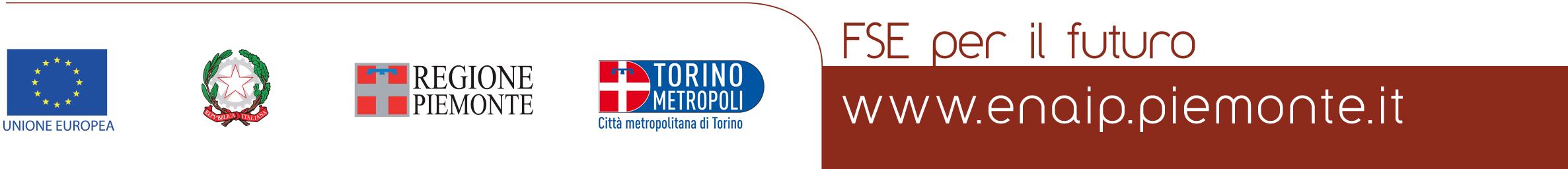 Logo FSE footer